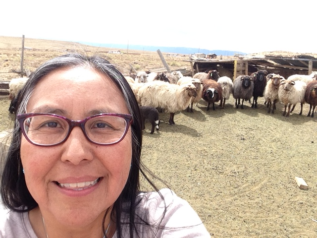 TahNibaa Naataanii of the Navajo Nation and her sheep in Table Mesa, New Mexico