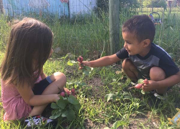 The Leech Lake Boys & Girls Club youth in their gardens