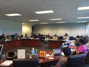 Ho-Chunk Food Sovereignty Initiative focus group at work