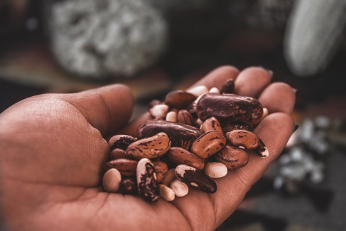 Photo of Apache Beans by Taylor Minjarez (White Mountain Apache)